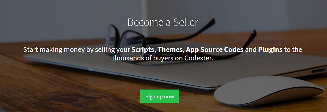 codester-8-seller